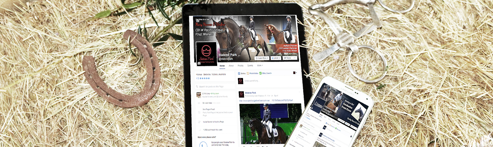 equine marketing