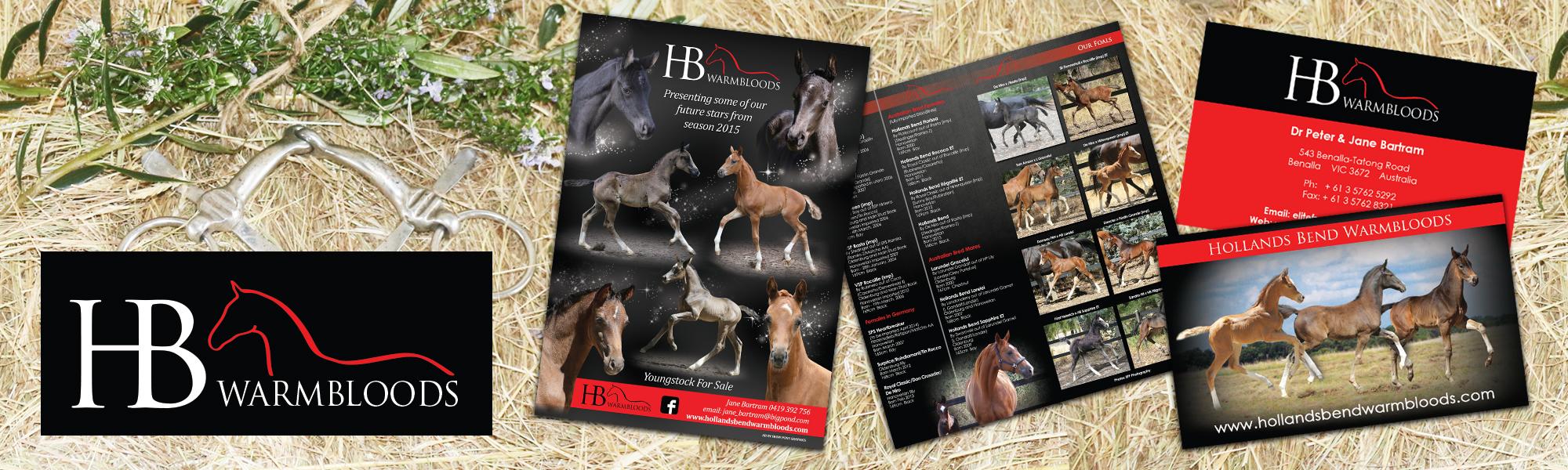 Equine Logo Design - Equestrian Logos