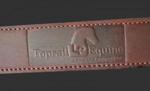 toprail2